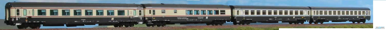 ACME 55213